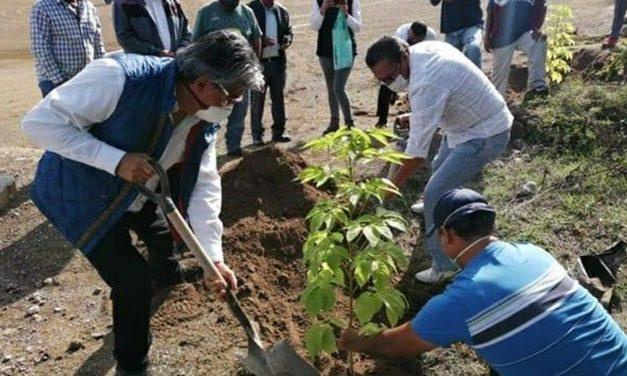 Buscan evitar la degradación de suelos