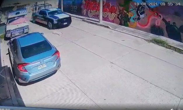 Piden castigo para policías que atropellaron a un perro